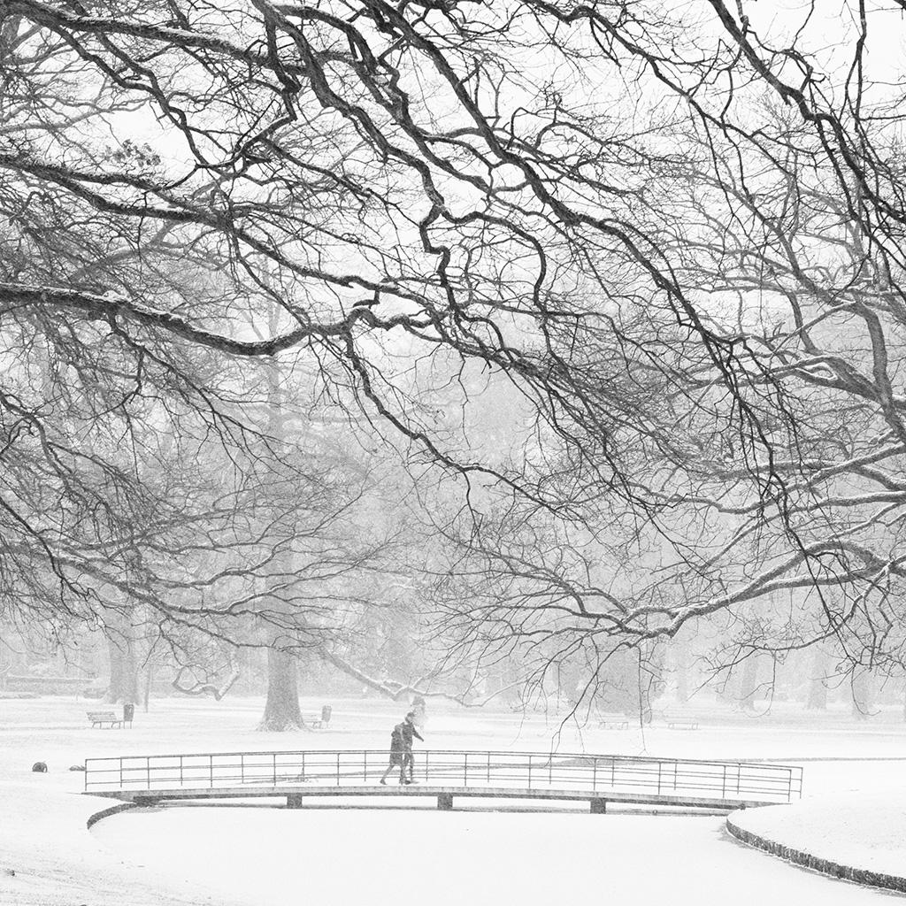 Oranjepark by Adriaan Holsappel