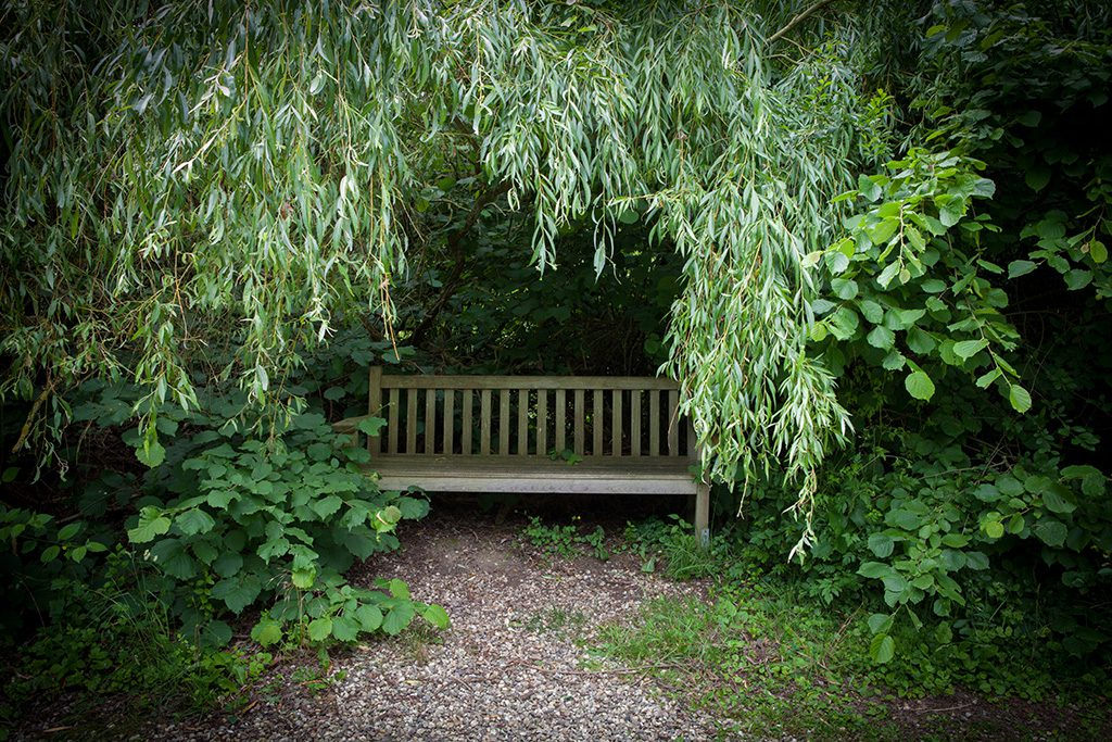 Bench by Adriaan Holsappel