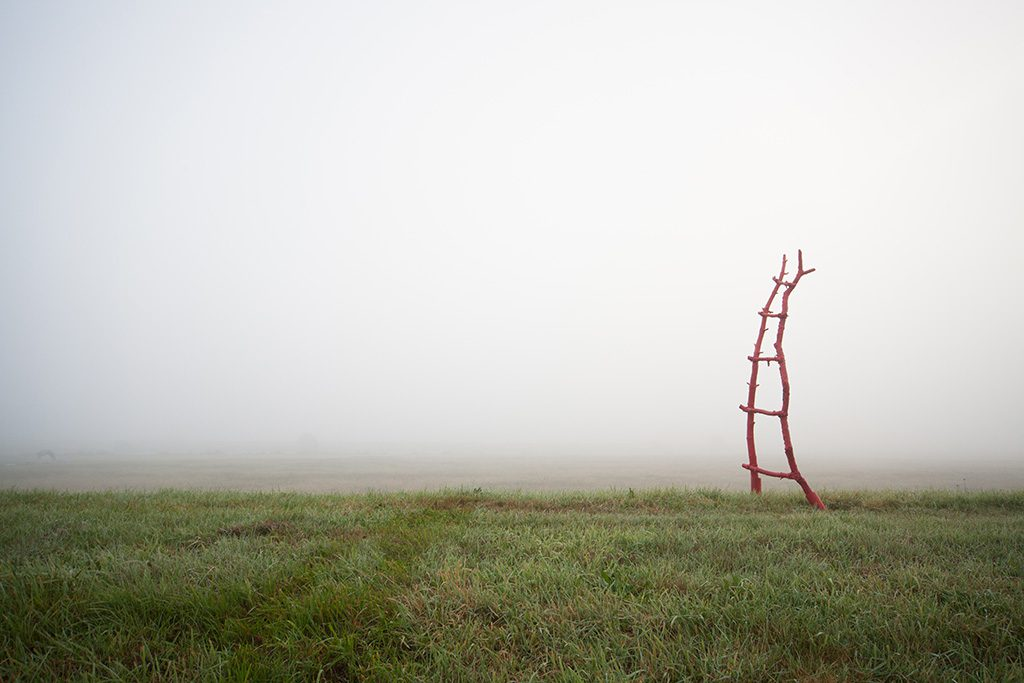 The ladder by Adriaan Holsappel